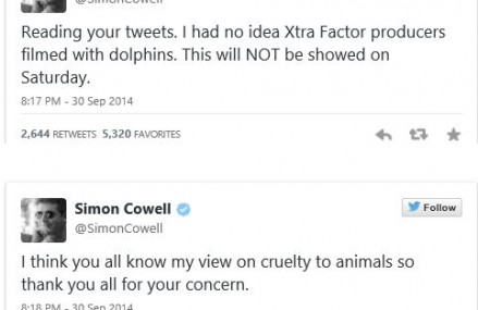 Simon Cowell's Perfect Reaction To The X-Factor's Dolphin Shows