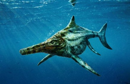 Dolphin-like reptile lived 170million years ago in seas around what is now the Isle of Skye