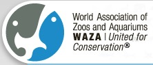 WAZA Council votes to suspend Japanese Association of Zoos and Aquariums (JAZA)