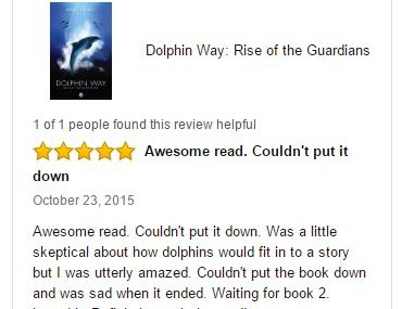 MTV Gives 5 Star Review for Dolphin Way on Amazon – Maybe a great Christmas present for someone?