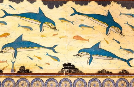 Article – Did a dolphin sense my feelings of grief?