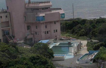 Dolphin and penguins locked in derelict Japan aquarium